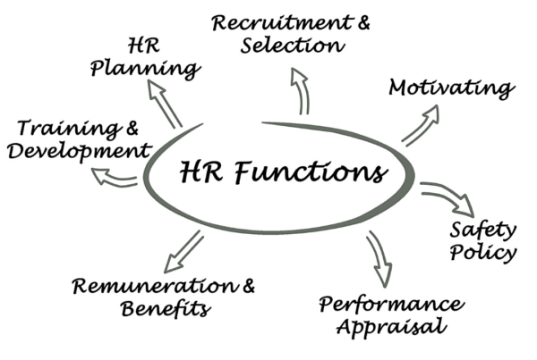 The Function of HR in Small Business Organizations